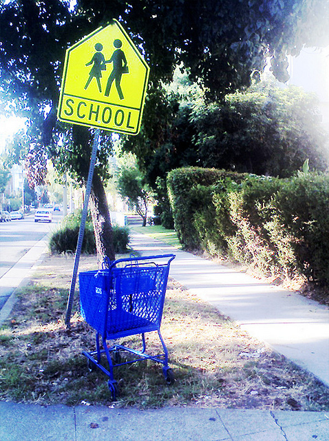 Abandoned Shopping Cart Image