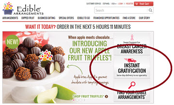 Ecommerce: 10 case studies to help you excel in content